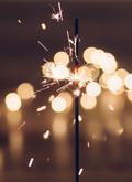 Photo of a Fireworks Celebration!
